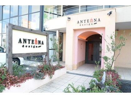 アンテナ デザインプラス 武蔵浦和店(ANTEnNA design+)の写真