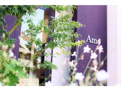 たさわ堂Amoの写真