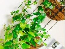 ヘアメーク パッセージ 府中店の雰囲気(緑いっぱいの落ち着いた雰囲気です♪  【パッセージ府中店】)
