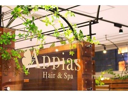 アッピアス 海老名(Appias)の写真