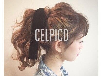 セルピコ(CelPico)の写真