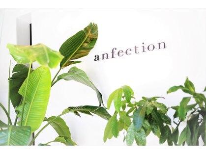アンフェクション(anfection)の写真