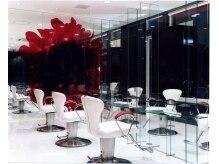 アース 南福島店(HAIR&MAKE EARTH)の雰囲気(白を基調とした広い店内)
