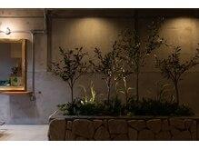 メルシー(Merci atelier salon)の雰囲気(花壇)