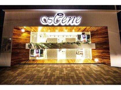 シーン(sCene)の写真