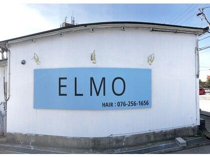 エルモ(ELMO)の写真