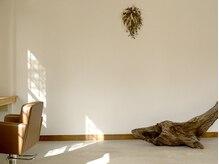 チャコ(cyaco)の雰囲気(やさしい光が入る心地の良い空間です♪)