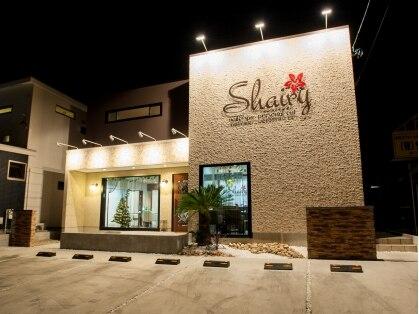 シェアリー(Shairy)の写真