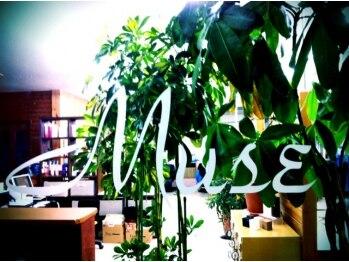 ミューズ 狭山ヶ丘店(Muse)の写真/狭山ヶ丘駅西口徒歩2分◆施術歴も長く経験豊富ながら気さくなスタッフばかり、店内はいつも和気あいあい♪