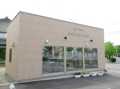 セリシオン(selision)