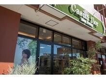 カシータ フロル 瀬戸幡野店(Casita flor)の雰囲気(オシャレな外観と太陽の光が差し込む、温かみある店内)