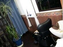 ビアン美容室の雰囲気(ここからの景色は、高い天井の青空と木洩れ日が心地よい)