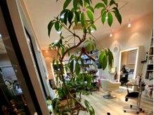 ヘアーメディカルサロン ミューズ(HAIR MEDICAL SALON MUSES)の雰囲気(プライベート空間でマンツーマンです。)