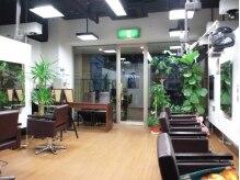 アールカミユイ(ar.KAMIYUI)の雰囲気(緑の多い店内でマイナスイオンを浴びて体もリフレッシュ♪)