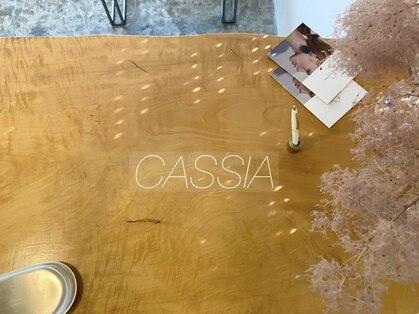 カシア(cassia.)の写真