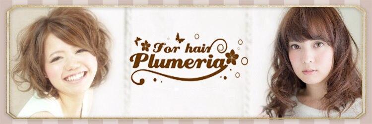 プルメリア(Plumeria)のサロンヘッダー
