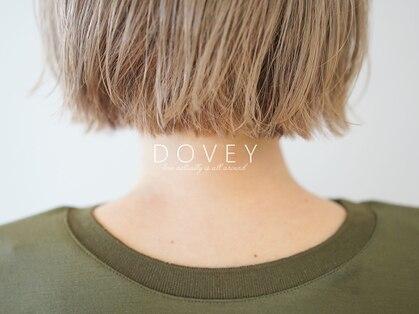 ダヴィ(DOVEY)の写真