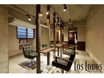 ロスロボス (LOS LOBOS)の写真