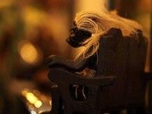 pupa hair LADIES BEAUTY LABO