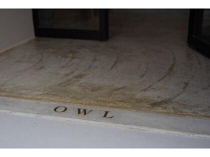 オウル(OWL)の写真