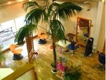 ヘアコンポジション マーキュリーの雰囲気(1階は緑に囲まれ癒しの空間♪)