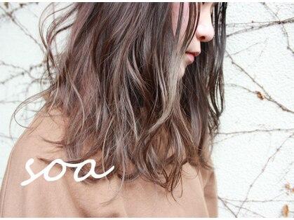 ソア(soa)の写真