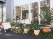 キール(kir.)の雰囲気(お店の前にある植物達も『Kir.』の雰囲気を作ってくれています♪)