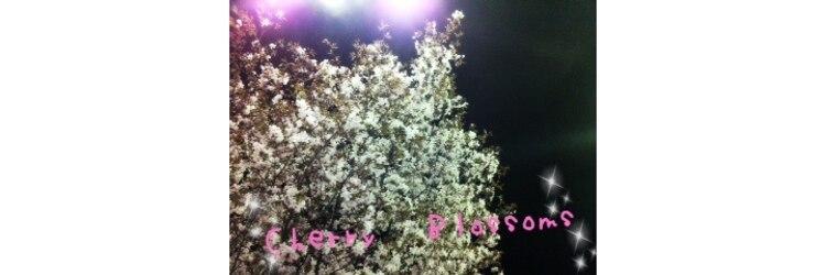 桜ブランコ 北18条店のサロンヘッダー