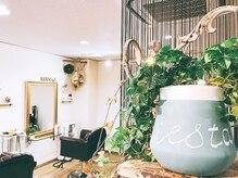シエスタ(siesta)の雰囲気(手作り家具や植物に囲まれ癒されるくつろぎサロン★)