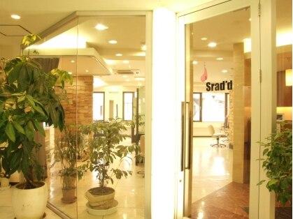 スラッド 大倉山(Srad'd)の写真