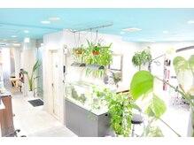 クラレスト 西心斎橋店(crarest)の雰囲気(明るい店内には緑も多く熱帯魚もいたり癒されること間違いなし♪)