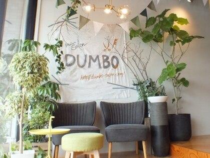 ヘアサロンダンボ(hair salon DUMBO)の写真
