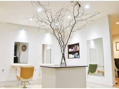 ヘアートープ ウニコ(life and hair design Hair Tope unico)の写真