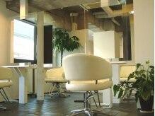センシティブプラント(Sensitive Plant)の雰囲気(4席だけの落ち付いた空間)