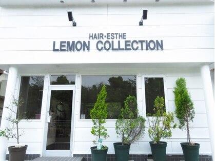 レモンコレクション(LEMON・COLLECTION)
