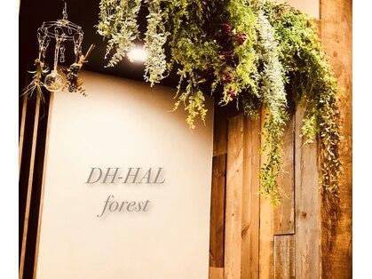 ディーエイチ ハル フォレスト(Dh-HAL forest)の写真