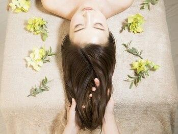 シャイン ヘア ブレンド 二子玉川(Shine hair blend)の写真/最高の贅沢ケアで上質ヘアに♪話題のTOKIOトリートメントで髪質改善!続ける程効果を実感◎[平日限定がお得]
