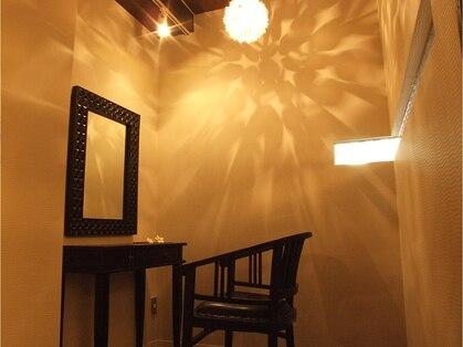 フランジパニ(frangipani)の写真