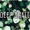 ディープオーガル(DEEP OGALE)のお店ロゴ