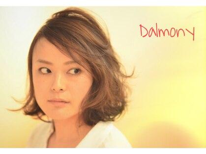 ダルモニー(Dalmony)の写真