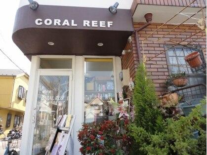 コーラルリーフ CORAL REEFの写真