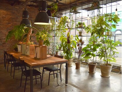 イレス 小樽店(IRESU)の写真