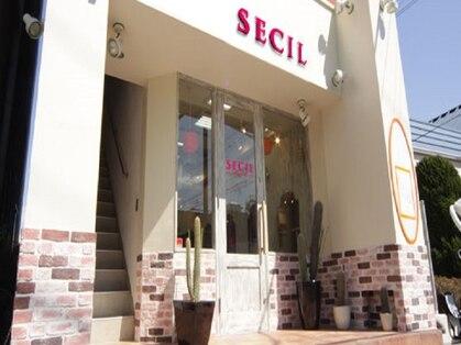 セシル 高津店(SECIL)の写真