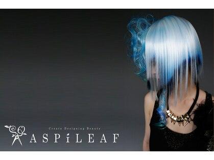 アスピリーフ(ASPILEAF)の写真