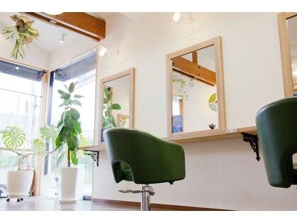 キュアリスタ ヘア ラボラトリー(Curelista Hair Laboratory)の写真
