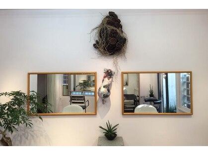 フクルル サロン ド コアフュール(FUKULULU salon de coiffure)の写真