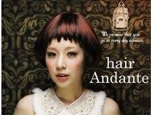 ヘアー アンダンテ(hair Andante)の雰囲気(お店のヘアースタイルはすべて店内で撮影してます♪)