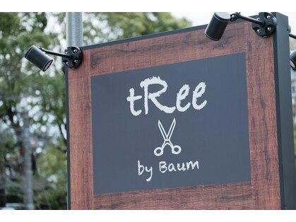 ツリーバイバウム(tRee by Baum)の写真