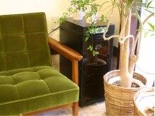 キリコ(kirico)の雰囲気(緑と自然光でリラックス♪)