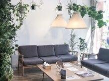 オッジ 西新店(Oggi)の雰囲気(爽やかな光が差し込み沢山のグリーンに囲まれた癒しの空間。)